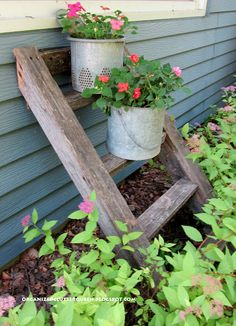 Old treehouse ladder with minnow bucket and minnow bucket insert as planters.