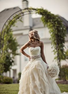 Wedding Dress/Gown - David's Bridal: Vera Wang collection