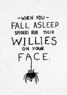 Fall Asleep, Laugh, Spiders, Quotes, Funny Stuff, Humor, Willis, Things, Smile. When you fall asleep spiders rub their willies on your face.
