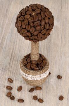 Small coffee tree