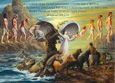 8 tajných faktov o reinkarnácii, ktoré nikto nevie! – Reinkarnácia
