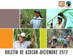 Le invitamos a leer el Boletín de la Red Azúcar CLAC donde encontrará información interesante acerca de los proyectos que están realizando las organizaciones azucareras de #comerciojusto #fairtrade en América Latina y Caribe.