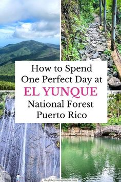 Discover El Yunque rainforest hiking and waterfalls in Puerto Rico. Use this guide to step off the beach and into the Puerto Rico rainforest. #travel #puertorico