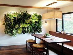 Green Wall Houseplant Pack// Live Mixed plants to create the perfect vertical garden//living wall//indoor plants//office space plants// Jardin Vertical Diy, Vertical Garden Design, Indoor Plant Wall, Indoor Plants, Indoor Living Wall, Living Walls, Vertical Plant Wall, Wall Garden Indoor, Living Room