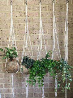17 Best Garden Connect Perth Images Garden Studio Gardens