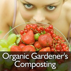 Organic Container Gardening – Five Things to Remember Do you crave a plateful of fresh salad comprising of vegetables grown in your own garden but resent the lack of space to cultivate them? If yes, then you have an option of growing them in containers Growing Herbs, Growing Vegetables, Gardening For Beginners, Gardening Tips, Organic Container Gardening, Pet Odor Eliminator, Types Of Herbs, Healthy Vegetables, Healthy Food