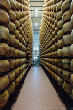 Take a food tour outside of Parma, Italy to see how real parmesan cheese is made Italy Tours, Italy Trip, Italy Vacation, Weather In Italy, Italy Culture, Italy Pictures, Italian Cheese, Italy Food, Italy Travel Tips