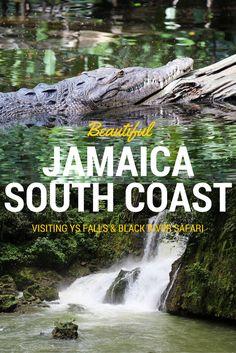 Visiting YS Falls and Black River Safari - Jamaica South Coast