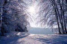 finienfotodesign - Fotokünstlerin Verena Maria - » verenas fotografische traumreisen - Zauberhafte Winterzeit #natur #nature #finienfotodesign #verenamaria #stille #silence #portfolio #fotografie #photography #art #korbach #eis #ice #winter #snow #frost #sauerland