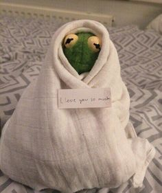 I should have never got rid of my Kermit doll. The post I should have never got rid of my Kermit& appeared first on Kermit the Frog Memes. New Memes, Funny Memes, Hilarious, Memes Humor, Sapo Meme, Memes Lindos, Frog Wallpaper, Cute Love Memes, Mood Pics