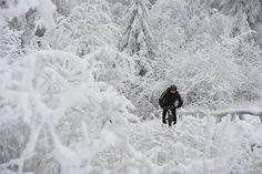 Winter's frozen splendor- slideshow - slide - 43 - NBCNews.com