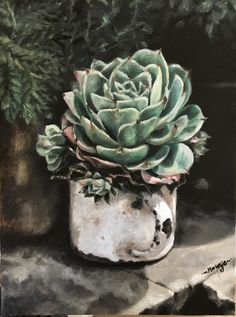 Succulent in tin cup, oil on canvas. Plant Painting, Watercolour Painting, Protea Art, Botanical Line Drawing, Pictures To Paint, Flower Art, Amazing Art, Succulents, Canvas Art