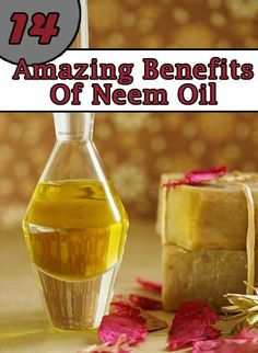 Neem Oil Benefits :Neem contains high level of antioxidants which protect the skin from environmental damage.