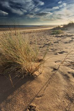 South Gare, Redcar, Teesside UK -  Peter Whysall