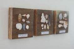 "Craft idea ""Beach Memories Board"" Love this for a craft! Would be quick since you just hot glue the shells and Modge Podge the label. I know we all have shells laying around that our kids have collected over the summer that we could bring in. For the hanger, the girl used a soda can tab. So cute!"