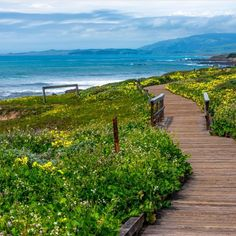 Must-See Spot: Moonstone Beach Cambria #Highway1DiscoveryRoute : @activecitytravel