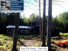 See 1 photo from visitors to Downeast Maine Vacation Rentals. Maine Vacation Rentals, Blue Hill, Coastal Cottage, Things To Do, Tours, Ox, Places, Nature, Deer