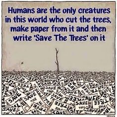 Save the trees, make paper, lol