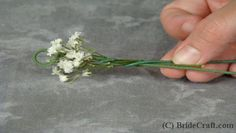 Floral design: to make long strands (garland or crown, etc) of baby's breath, wrap floral wire....