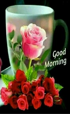 Pin By Narendra Pal Singh On Good Morning Guten Morgen Good Morning Thursday, Special Good Morning, Good Morning Coffee, Good Morning Picture, Good Morning Good Night, Morning Pictures, Good Morning Images, Sunday Images, Morning Pics