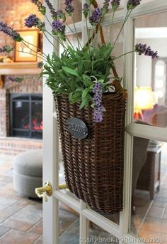 Back Porch Musings Blog--lots of decorating ideas. the walk out must b tiled! dave is gonna die- AGAIN!