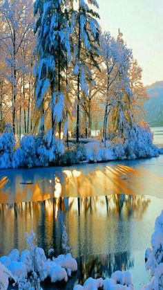 Awesome Winter Landscape Photos « Cuded – Showcase of Art & Design Winter Landscape, Landscape Photos, Landscape Photography, Nature Photography, Winter Szenen, Winter Sunset, Winter Magic, Winter Colors, Foto Picture