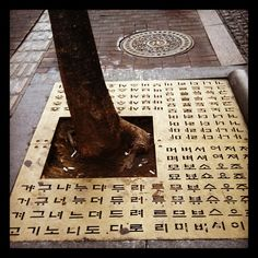 한글! Korean Writing, Korea Design, Korean Language, Dramas, Script, Street Art, Typography, Meet, Concept