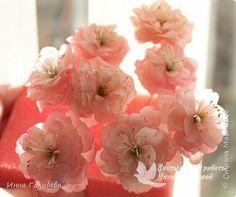 Девочки,обещанный мк по майской розе. фото 20