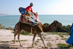 Taghazout, Morocco....going surfing