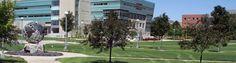 Ferris State University - Big Rapids, MI