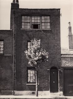 In the midst of life I woke to find myself living in an old house beside Brick Lane in the East End of London Vintage London, Old London, London City, Island Horse, Museum Of Childhood, Tower Hamlets, East End London, Green Pictures, Bethnal Green