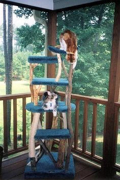 Rustic 5 level Furwood outdoor cat stand including 2 flat levels, 1 large round, 2 cradles and 1 sisal wrapped post. Weather-proof. $535.00