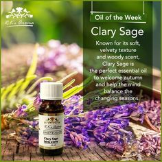 The transition from one season into another can cause mental fatigue and mood swings. Our #OilOfTheWeek, Clary Sage, is perfect to help you prepare for autumn.