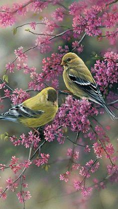 Lavender birds