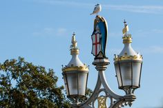 Ornate cast iron street lights,pictured on Lendal Bridge,York,North Yorkshire,England © Steve Gill from Photocrowd.com
