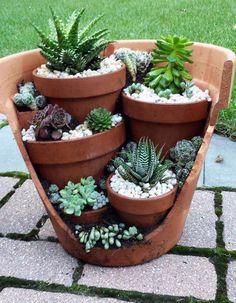 Schritt für Schritt Anleitung für Diy Cactus Gardeners - UPCYCLING IDEEN, #Anleitung #cactus... #gardendiyideas Succulent Planter Diy, Diy Planters, Garden Planters, Succulents Garden, Planter Ideas, Terrarium Diy, Cactus Garden Ideas, Succulent Containers, Fall Planters