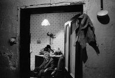 Chris Steele-Perkins - G.B. England, Middlesbrough. Pensioner and her dog.