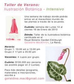 taller de verano 2013 <3
