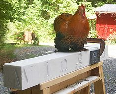 Cute chicken, cute rooster, animal rights, #vegan, vegan art, beautiful rooster, cute rooster Icarus, rooster on marble carving Wing-ed, vegan photos, United Poultry Concerns, the rights of chickens, cute rooster, adorable rooster, beautiful rooster