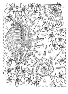 5 Pages Of Shells To Color Digital Instant Download Coloring Adult Books Beach