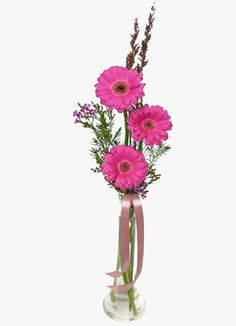 Gauteng Flower & Gift Delivery for all occasions. Whether you are looking for luxury or budget, our flower shops have what you are looking for. South Africa, Gift Delivery, Flowers, Plants, Gifts, Presents, Plant, Favors, Royal Icing Flowers