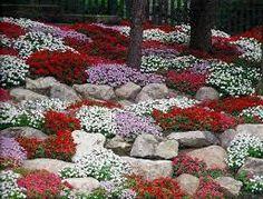 Risultati immagini per giardino roccioso