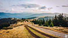 Valea Iadului - cascade pitorești și natură sălbatică - Cherry on The World Romania, Drum, Cherry, Country Roads, Mountains, World, Places, Nature, Travel
