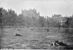 Victorian Green Park