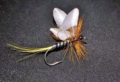 ... And one more... #flyfishingaddict #flytyingtable #flytyingporn #flytyingaddict #tyingflies #flyfishingnation #flyfishingjunkie #fligenfischen #perhokalastus #bassfishing #fishingflies #flytying #flyfishing #deercreekflies #troutfishing #flyfishingporn#loonoutdoors #flugbindning#flyfishingonly #flytyingart #flyfishingutah #speyfishing #flyfishinglife #flyfishingfanatic #flugfiske #pescacommosca #pescaamosca #flylords#troutflies#troutbum