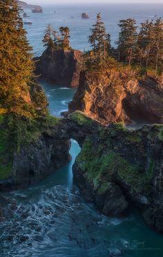 Coast of Oregon by Dustin Wong on 500px