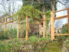 deer fencing for gardens   Sustainable Saints: Ideas for Deer Fences