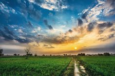 Photograph Sunset from Fields by Manvir  Singh on 500px