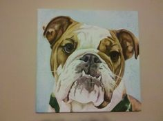 Loved painting Webster the Bulldog - Custom Watercolor Pet Portrait Painting From Photo 12 x by MadShinyShoppe #dogportrait #bulldogpainting