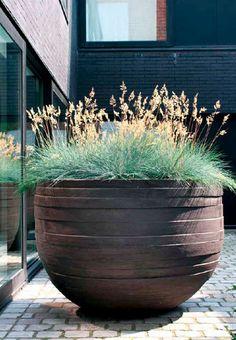 ornamental grass grown in outdoor garden pot by Atelier Verkant